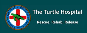 The Turtle Hospital Logo