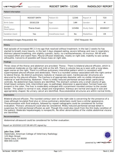 Radiology Report Website