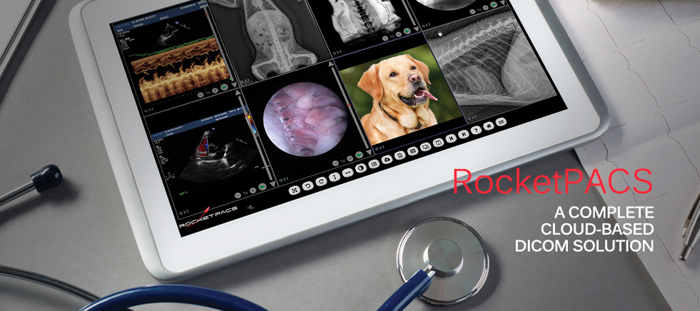 RocketPACS - A Complete Cloud-Based DICOM solution